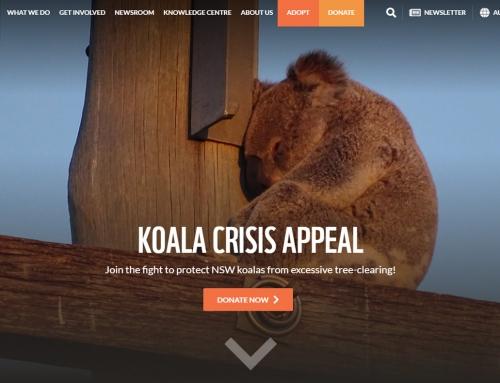 WWF Australia
