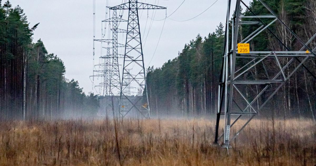 Stop Habitat Fragmentation for New Electricity Transmission